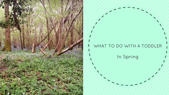 What to do with a toddler in Spring