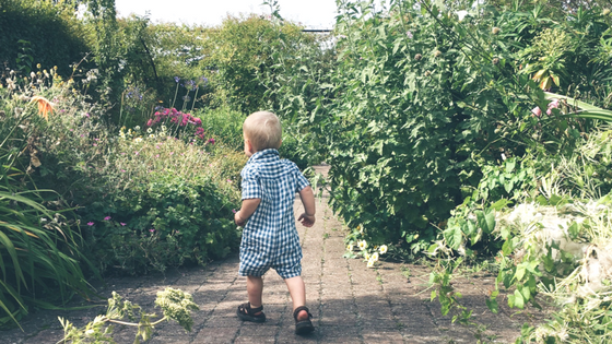 Summer Days Out with a Toddler in and Around Surrey